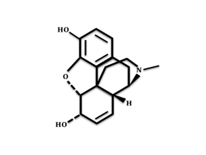 B-endorphin